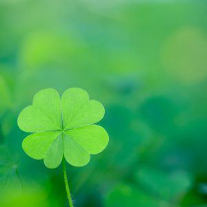 four_leaves_clover