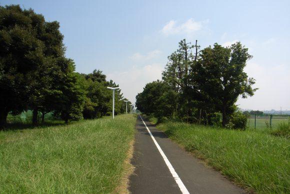 Yumenoshima_greenway