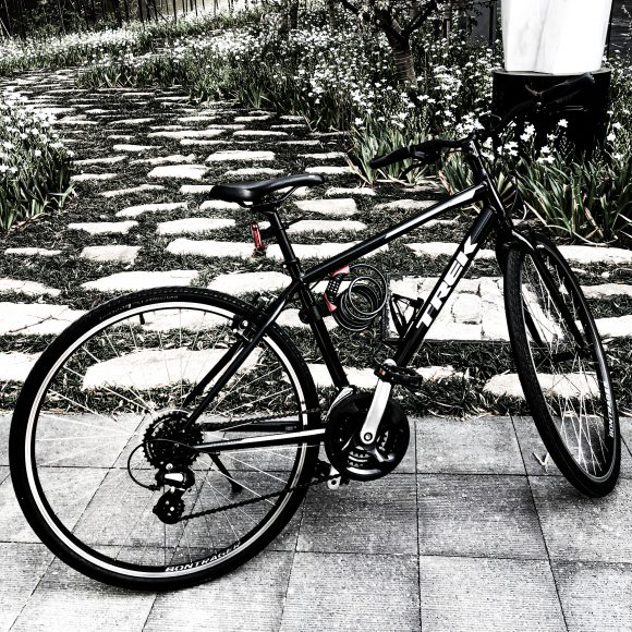 Crossbike-TREK-FX1